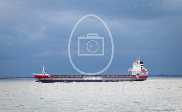 A cargo carrier of shipping company Wagenborg sails along Vlissingen - EggHeadStock