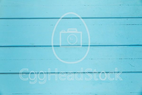Background of turquoise wood paneling - EggHeadStock