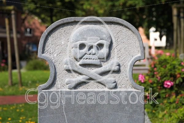 Blank gravestone with skull and crossbones - EggHeadStock
