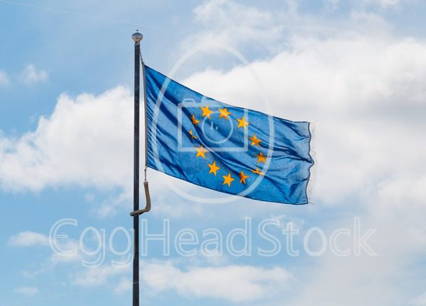 Blue flag of the European Union - EggHeadStock