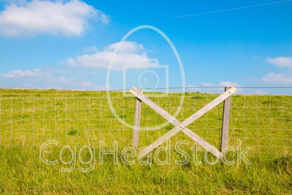 Fencing at grassy dike - EggHeadStock