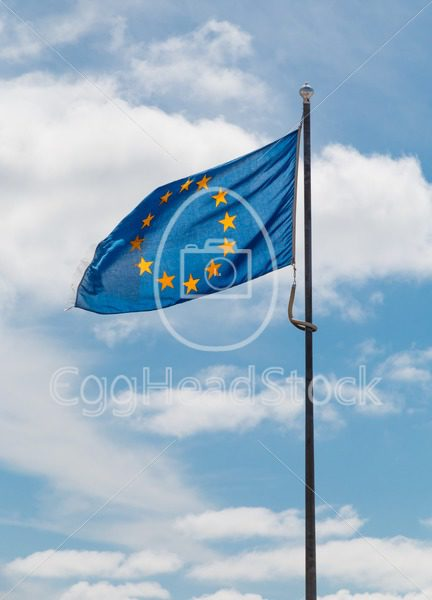 Flag of the European Union - EggHeadStock