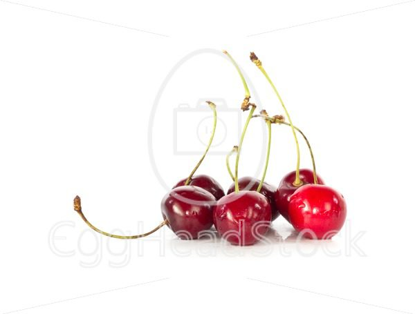 Fresh rinsed cherries - EggHeadStock