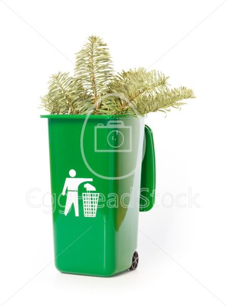 Garden waste in the green wheelie bin - EggHeadStock