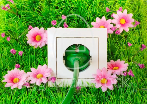 Green power plug into outlet on the grass - EggHeadStock