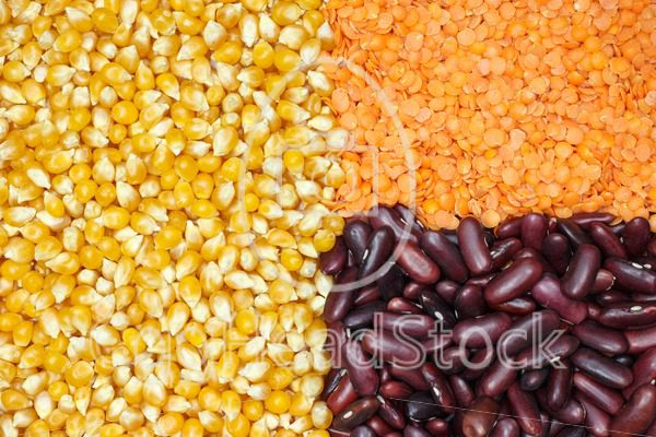 Grouped corn, lentils and beans - EggHeadStock