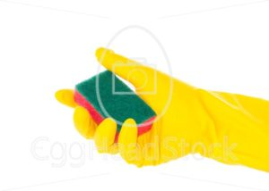 Hand in rubber glove holding red cleaning sponge - EggHeadStock