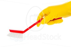 Hand in rubber glove with red dishwashing brush - EggHeadStock