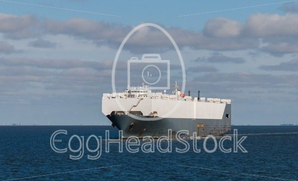 Large car carrier - EggHeadStock