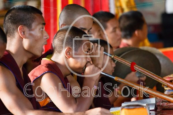 Monks in Buddhist monastery blowing on Tibetan dungchen horn - EggHeadStock