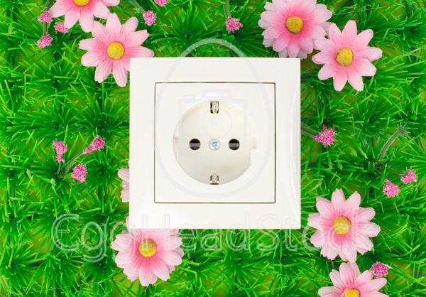 Power outlet on the green grass - EggHeadStock