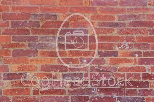 Red orange brick wall - EggHeadStock