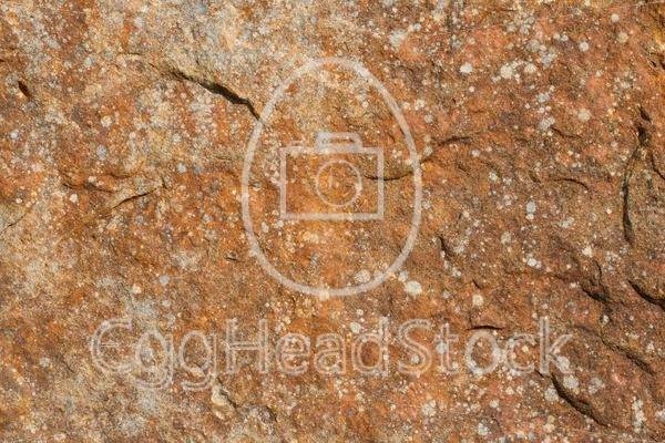 Rusty red rock face background - EggHeadStock
