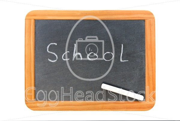 School written on vintage chalkboard and a chalk on the board - EggHeadStock