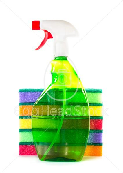 Spray bottle for a stack of sponges - EggHeadStock