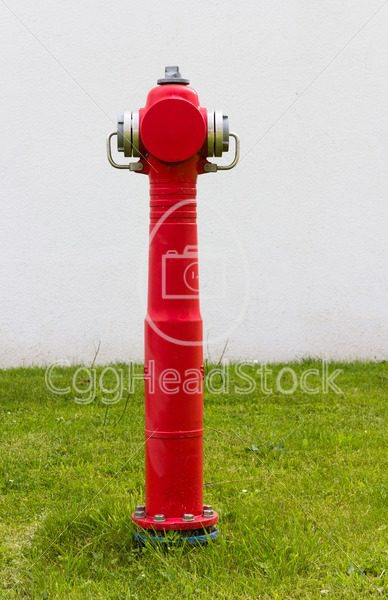 Standing red fire hydrant - EggHeadStock