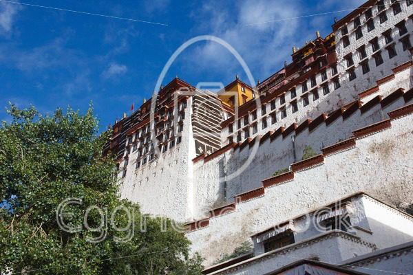 The Potala Palace from a view from below - EggHeadStock