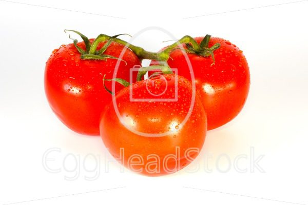 Three fresh just washed vine tomatoes - EggHeadStock