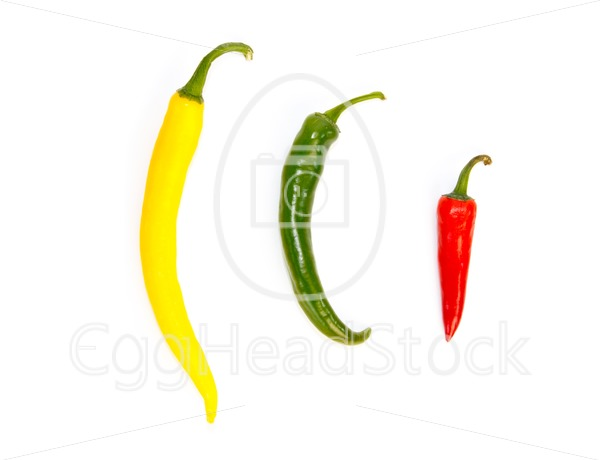 Three peppers in a row in different colors - EggHeadStock