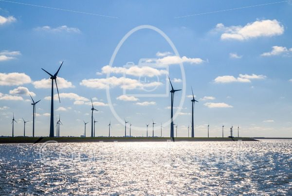 Wind farm on the coast backlit by the sun - EggHeadStock