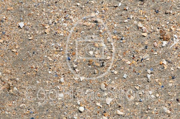 Close up of the sand on Utah Beach - EggHeadStock