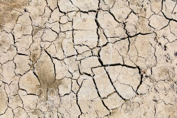 Cracked and dry soil - EggHeadStock