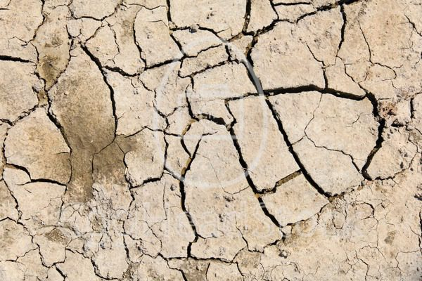 Dry and cracked soil - EggHeadStock