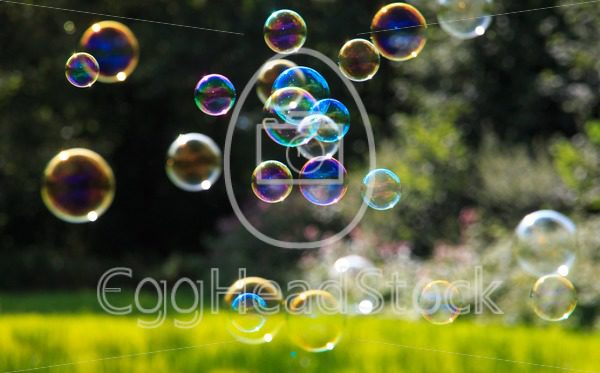 Colored soap bubbles against a green background - EggHeadStock