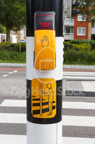 Dutch pedestrian light with button and text  to wait for green light - EggHeadStock