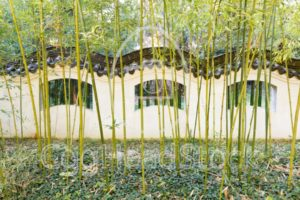 Wall in Chinese style with bamboo in front - EggHeadStock