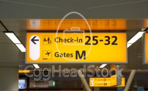 Illuminated sign with gate number and check-in desks - EggHeadStock