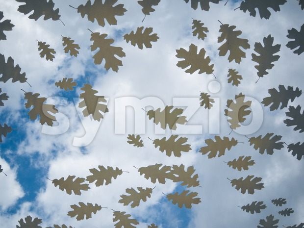 Autumn atmosphere on a glass plate with oak leaves Stock Photo