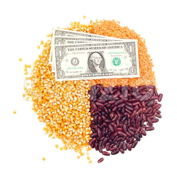 Pie chart of corn, lentils, kidney beans and dollar bills on top Stock Photo