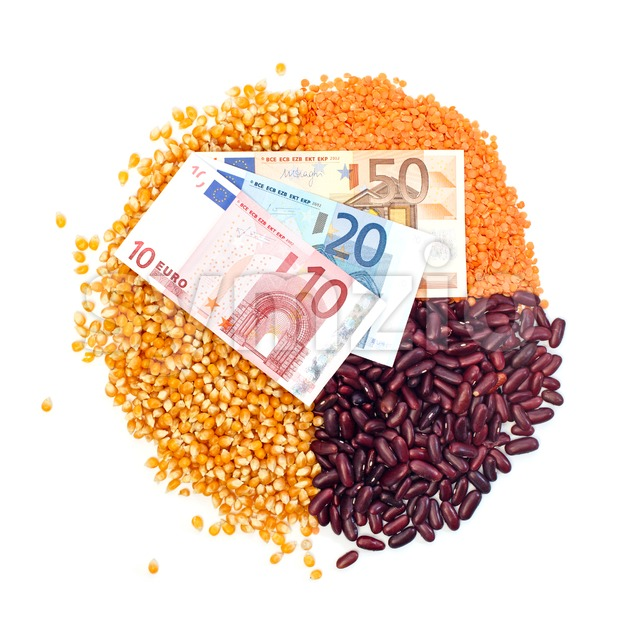 Pie chart of corn, lentils, kidney beans and euro notes on top Stock Photo