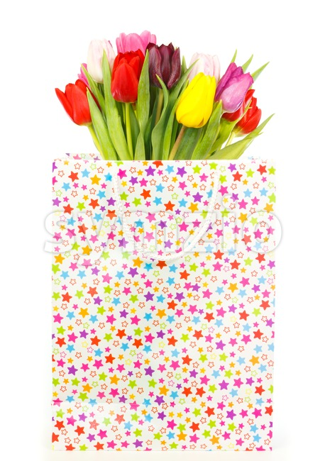 Bunch of colorful tulips in a gift bag isolated on white