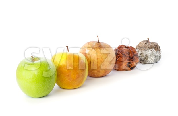 Five apples in a row in various states of decay Stock Photo