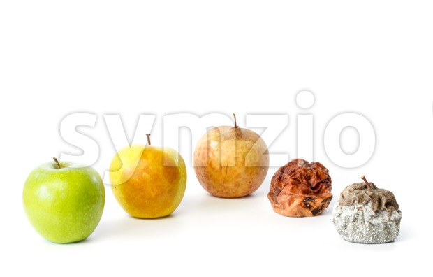 Five apples in different stages of decay Stock Photo