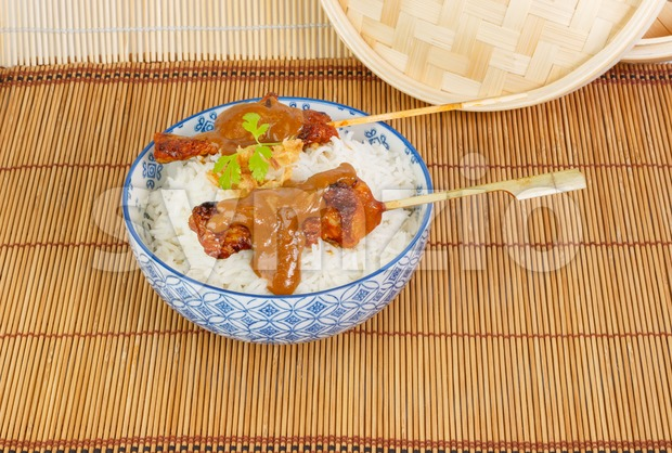 Charcoal grilled pork satay with rice, sauce and fried onions Stock Photo