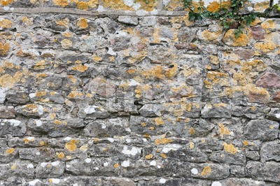 Stone wall background with lichens Stock Photo