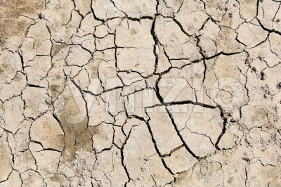 Cracked and dry soil Stock Photo