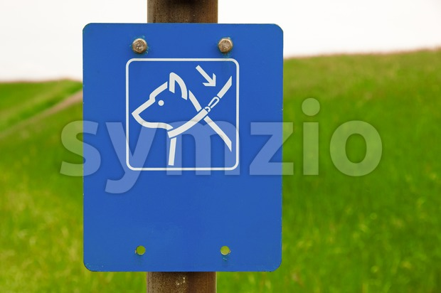 Dogs on leash sign in the park
