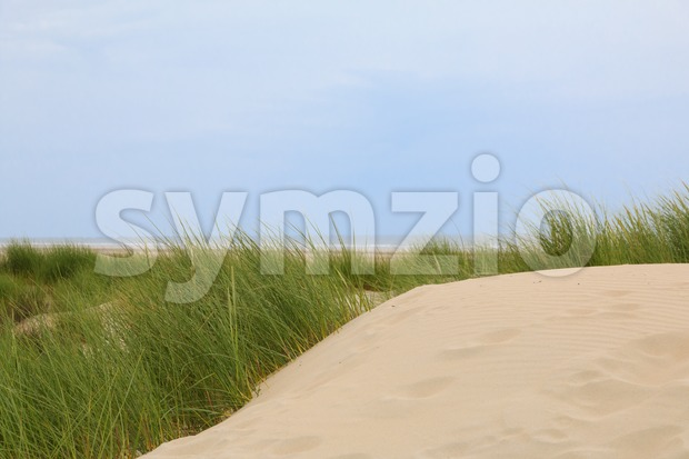 Dunes along the North Sea coast Stock Photo