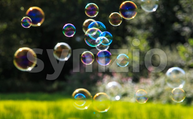 Colored soap bubbles against a natural green background with shallow depth of field