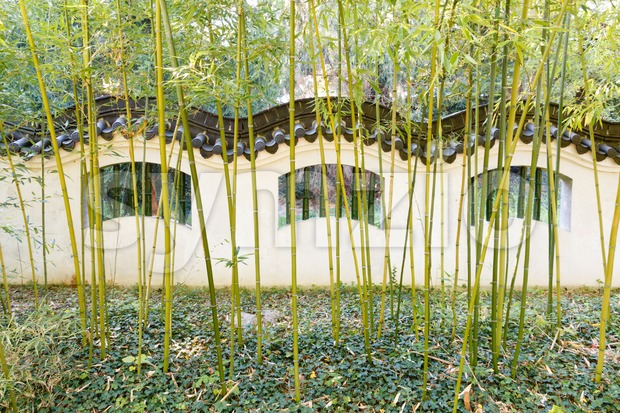 Wall with waving pattern in typical Chinese style with bamboo in front