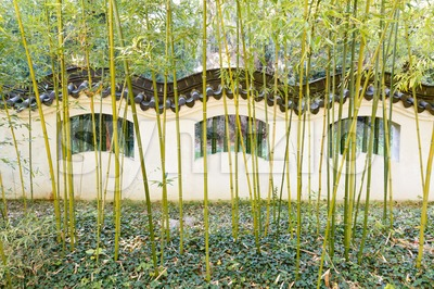 Wall in Chinese style with bamboo in front Stock Photo